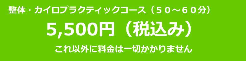 料金は5500円(税込)です